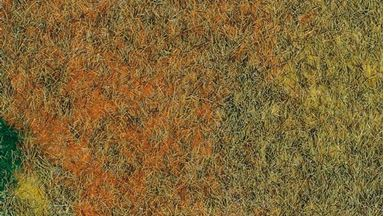 AUHAGEN 75116 — «Летний луг» (лист 500×350мм ≈0,175 м²), 1:35–1:120, Сделано в Германии