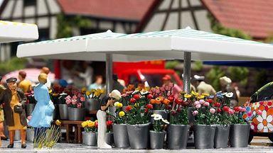 BUSCH 1072 — Цветочный рыночный торговый прилавок, H0