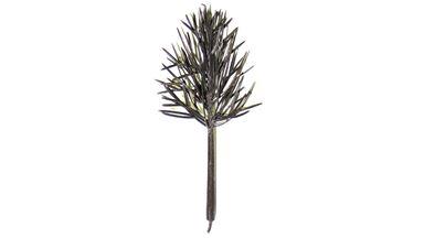 CMOD WM0040 — Каркас лиственного дерева (~40мм, 15 шт., пластик), 1:72—1:300