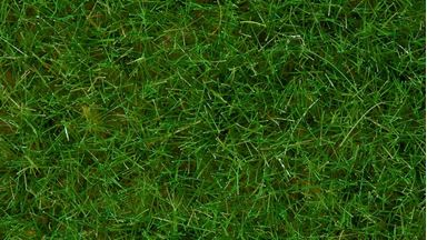 NOCH 07102 — Трава светло-зелёная (флок ~6мм, ~50 г), 1:35—1:120