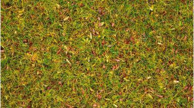 NOCH 08330 — Трава «Цветущий луг» (флок ~2,5мм, ~20 г), 1:16–1:250