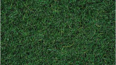 NOCH 08320 — Трава тёмно-зелёная «Торфяник» (флок ~2,5мм, 20 г), 1:35—1:200, Сделано в ЕС