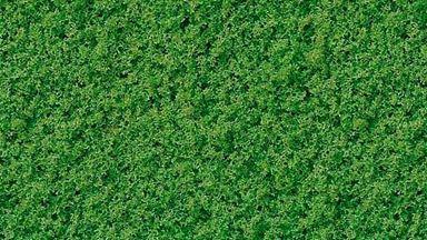 BUSCH 7321 — Листва «Майская зелень» (пена, 500 мл.), 1:43—1:220