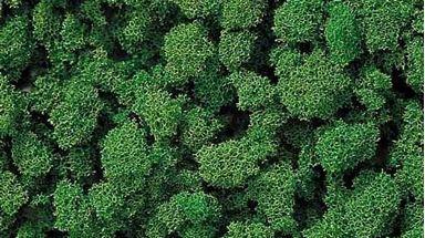 BUSCH 7362 — Листва зеленая (пена крупная ~500 мл.), 1:18—1:220