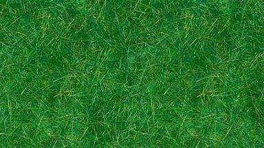 BUSCH 7370 — Трава тёмно-зелёная ~6мм (20 г), 1:16—1:250