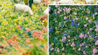 BUSCH 7359 — Цветы крокусы (пена, 200 мл.), 1:18—1:220