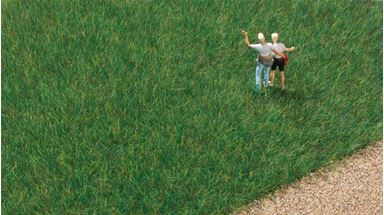 AUHAGEN 75612 — Трава тёмно-зелёная (флок ~6мм) (50 гр.), 1:18—1:120