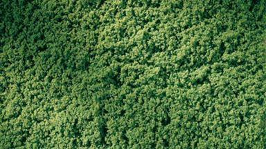 AUHAGEN 76666 — Газон светло-зеленый (лист 150×250мм ~0,0375 м²), 1:22—1:220