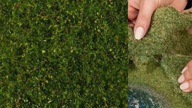 NOCH 07291 — Луговая растительность зелёная (фолиаж ~200×230мм≈0,046м²), 1:10—1:250