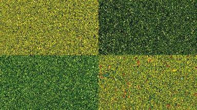 BUSCH 7050 — Трава (присыпка ~40 г×4 оттенка), 1:10—1:250