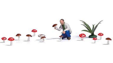 BUSCH 7875 — Грибник, папоротник и 14 грибов, 1:87