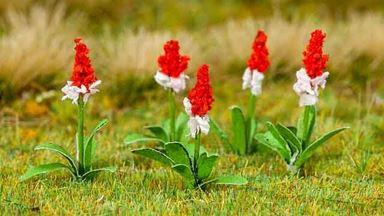 FALLER 181267 — Орхидеи ~12 мм (32 растения), 1:72—1:100